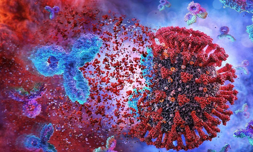 Weitere Studie zweifelt an dauerhafter Immunität nach Covid-19-Infektion