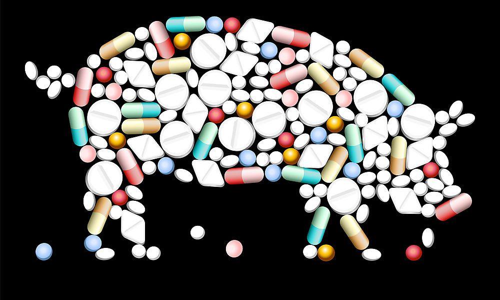 EU-Parlament lehnt strengere Antibiotika-Regeln für Tiere ab
